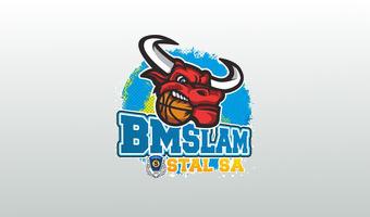 bm_slam_stal_ostrów_wielkopolski